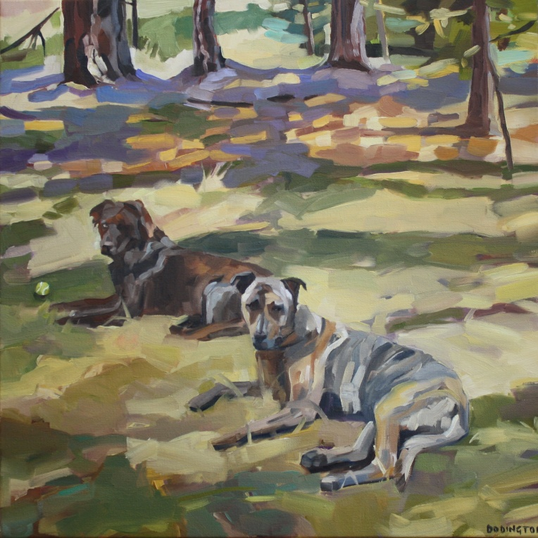 New Mexico Dogs, Oil on Canvas, 18 x 18""