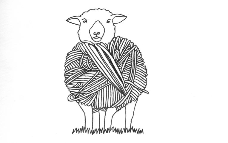 drawing of a sheep and ball of yarn