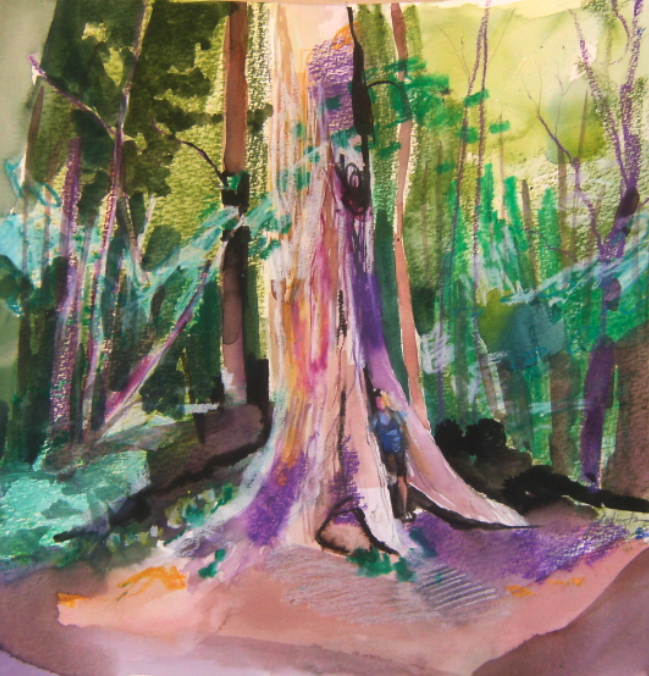 mixed media drawing of jessie dodington in forest with very large tree