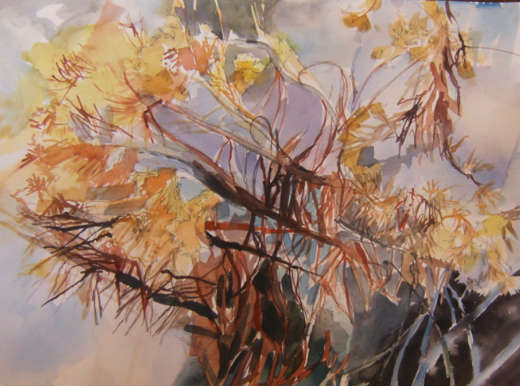 watercolour drawing of vegetation