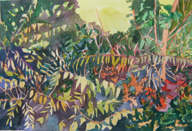 watercolour of leaves and forest