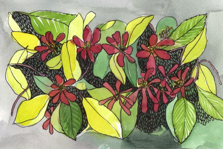 ink and watercolour drawing of floral pattern