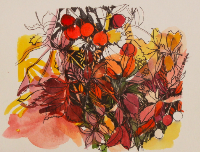 Watercolour and ink drawing of vegetation and berries