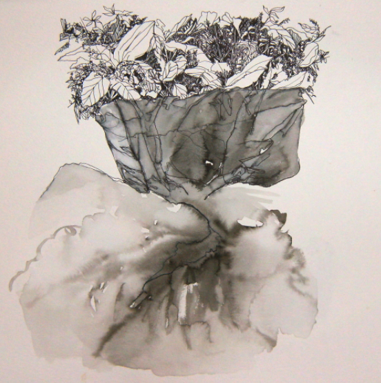 pen and ink drawing for poem of plants and bedding