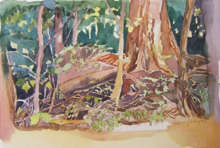 watercolour of forest and stump and twigs
